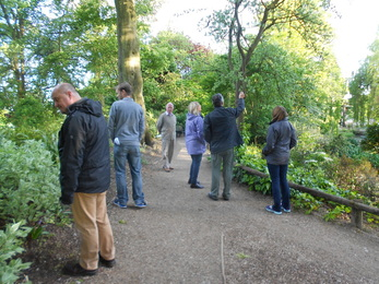 Mindfulness Group at Kings Heath Park